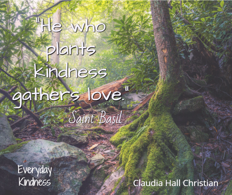 plant kindness gather love