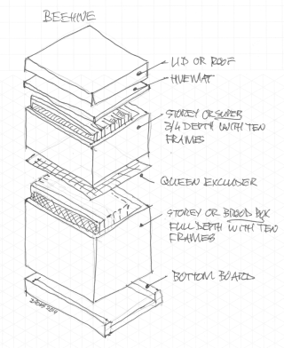 Beehive layout of boxes and hiveware - by Dirk Pons