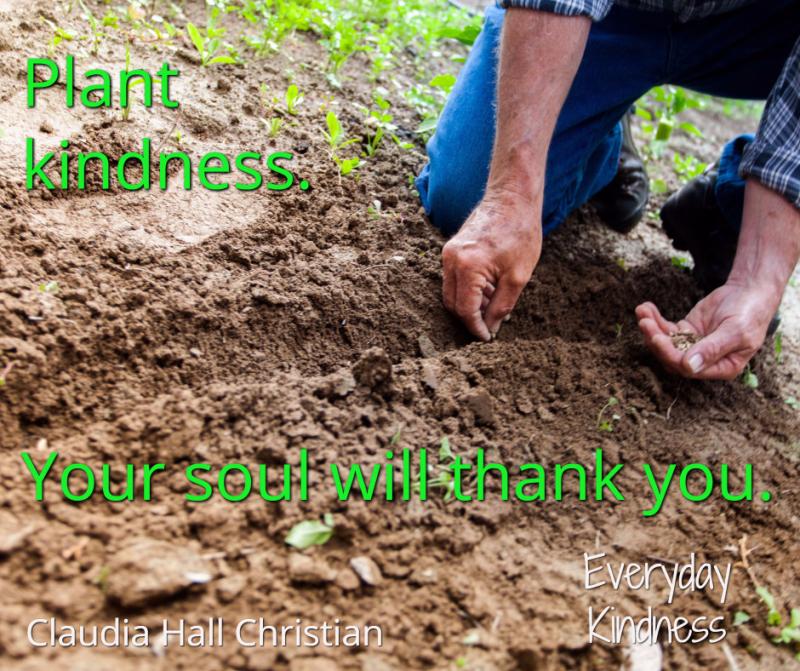 Plant kindness
