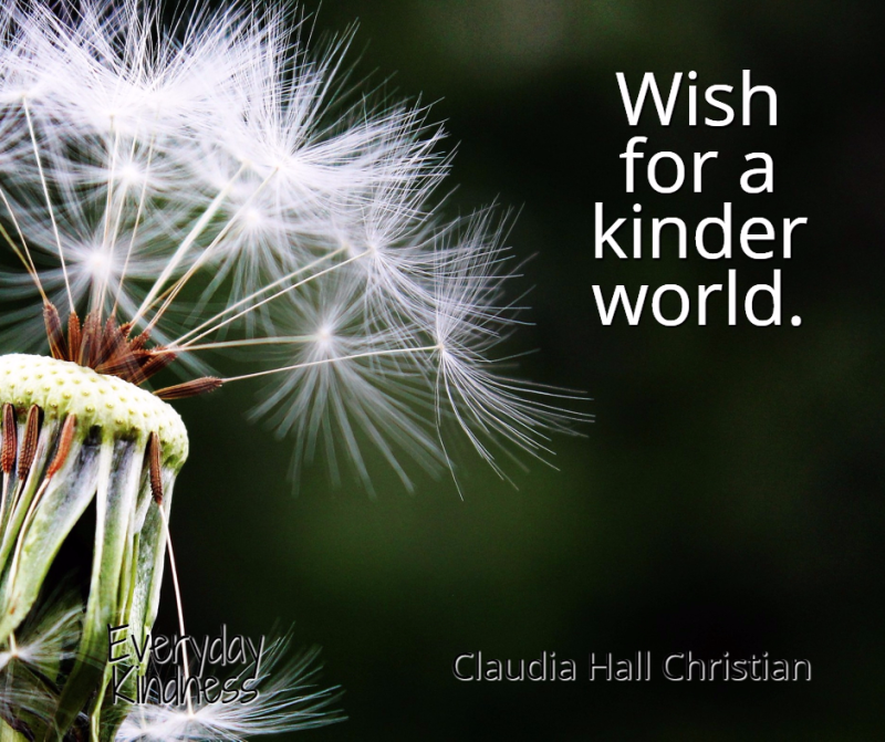 Wish for a kinder world.