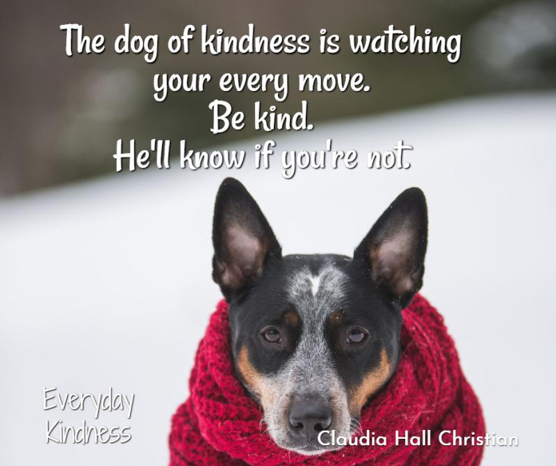 Dogofkindness